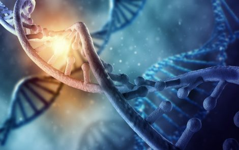 Loss of Certain Protein Identified in Ovarian Cancer Resistance to PARP Inhibitors