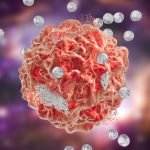 Nami targeted therapy for ovarian cancer